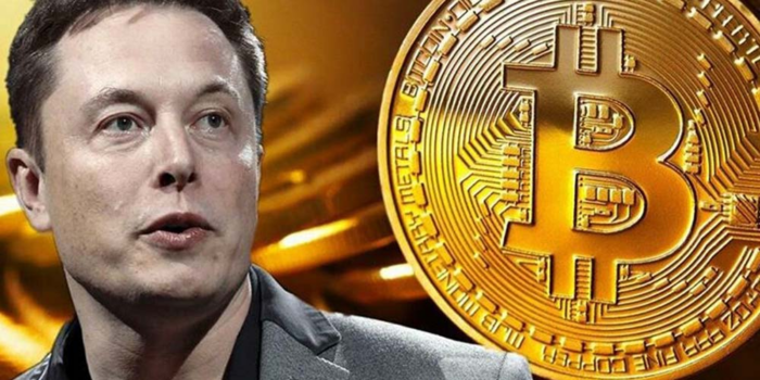 Why Is Elon Musk Bitcoin's Biggest Influencer