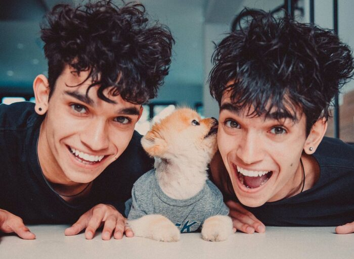 Dobre Brothers Net Worth 2021